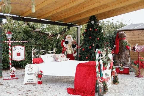 Navidad-5635.JPG