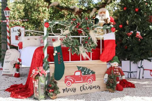 Navidad-5602.JPG