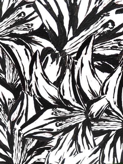Lilly Pattern