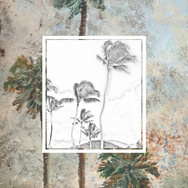 Tropical Graphic