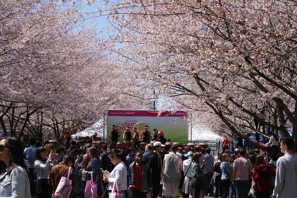 Tamagawa University preparing to play.