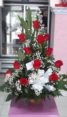 1 Docena de Rosas