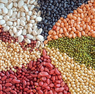 豆類及豆製品