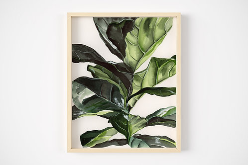 Fiddle Leaf Fig Print