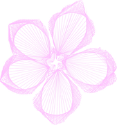 original flower.png
