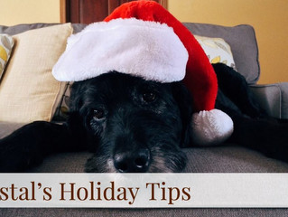 Coastal's Holiday Tips! Day 8