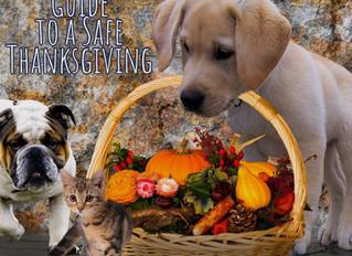 Safe Thanksgiving