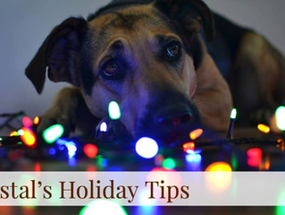 Coastal's Holiday Tips! Day 7
