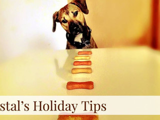 Coastal's Holiday Tips! Day 2