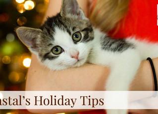 Coastal's Holiday Tips! Day 6