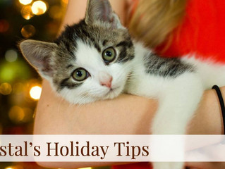 Coastal's Holiday Tips! Day 6