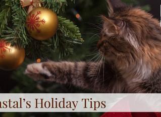 Coastal's Holiday Tips! Day 4