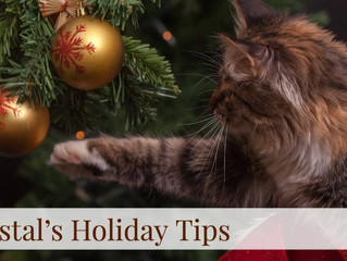 Coastal's Holiday Tips! Day 4