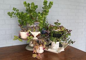 Home Decorating Interior Designer Winston Salem 27106 Brookberry Farm Home Staging Home remodeling Home Renovations