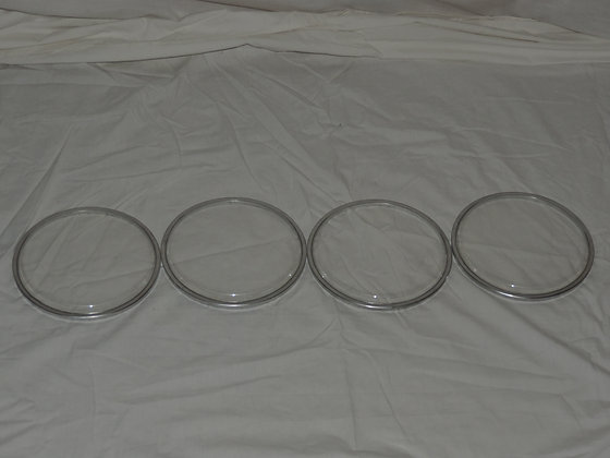 "6"" Octoban Heads in Clear - Set of 4"