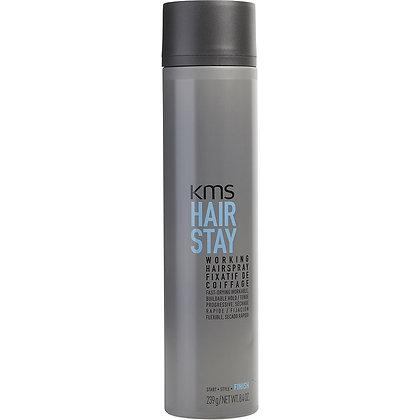 HS Working Spray Voc 300ml.
