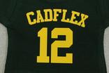 CADFLEX