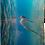Thumbnail: UNI5996 FOTOPANEL  ALUMINIO 8x10 SILVER