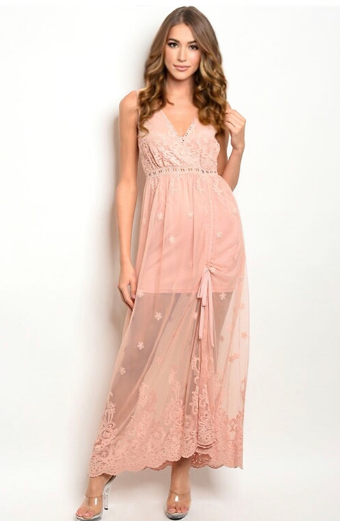 2207 BLUSH DRESS