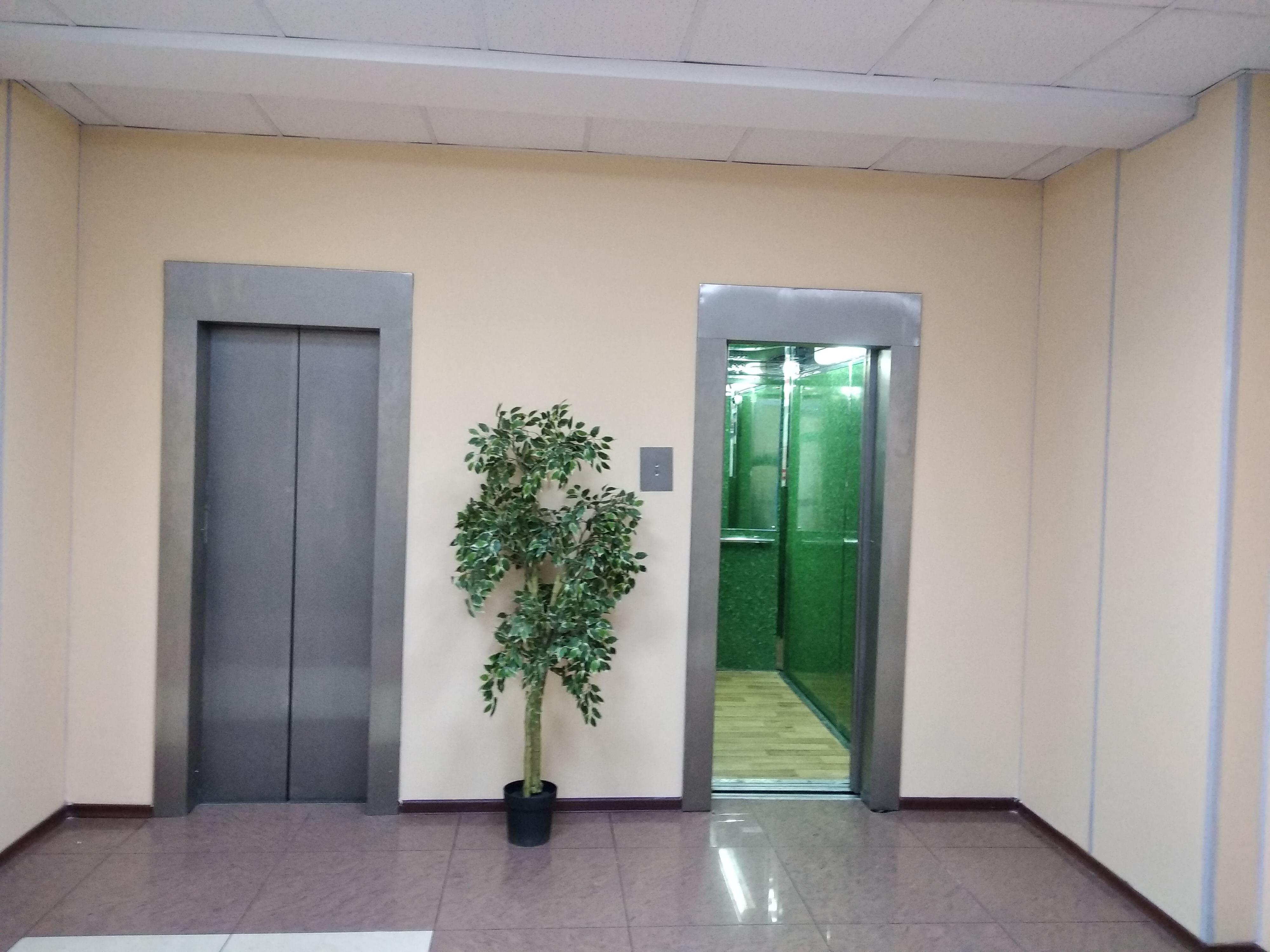 лифтовой холл этаж 5