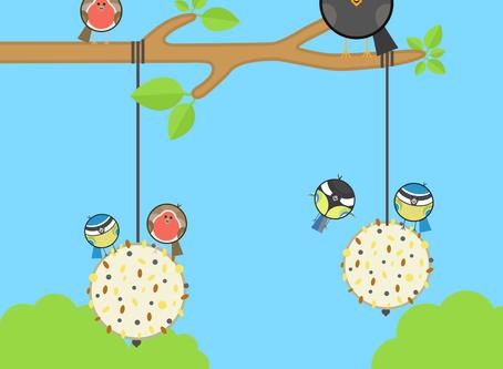 Project #2 - Bird Feeder
