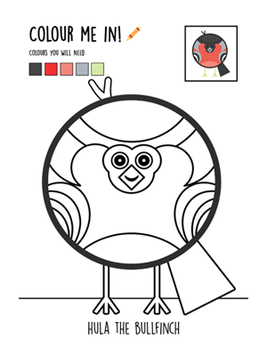 Colour-in-bullfinch.png