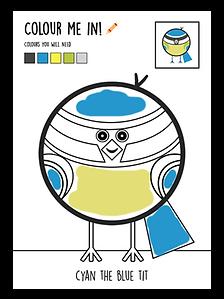 Colour-head-02.png