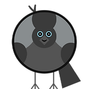 bird-profile-jackdaw.png