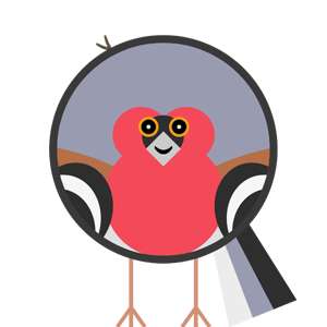 bird-profile-chaffinch.png