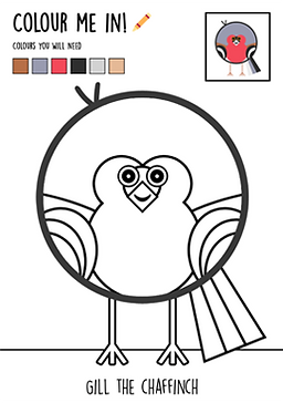 Colour-in-chaffinch.png