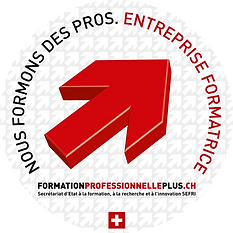 Logo formation professionnelle.png
