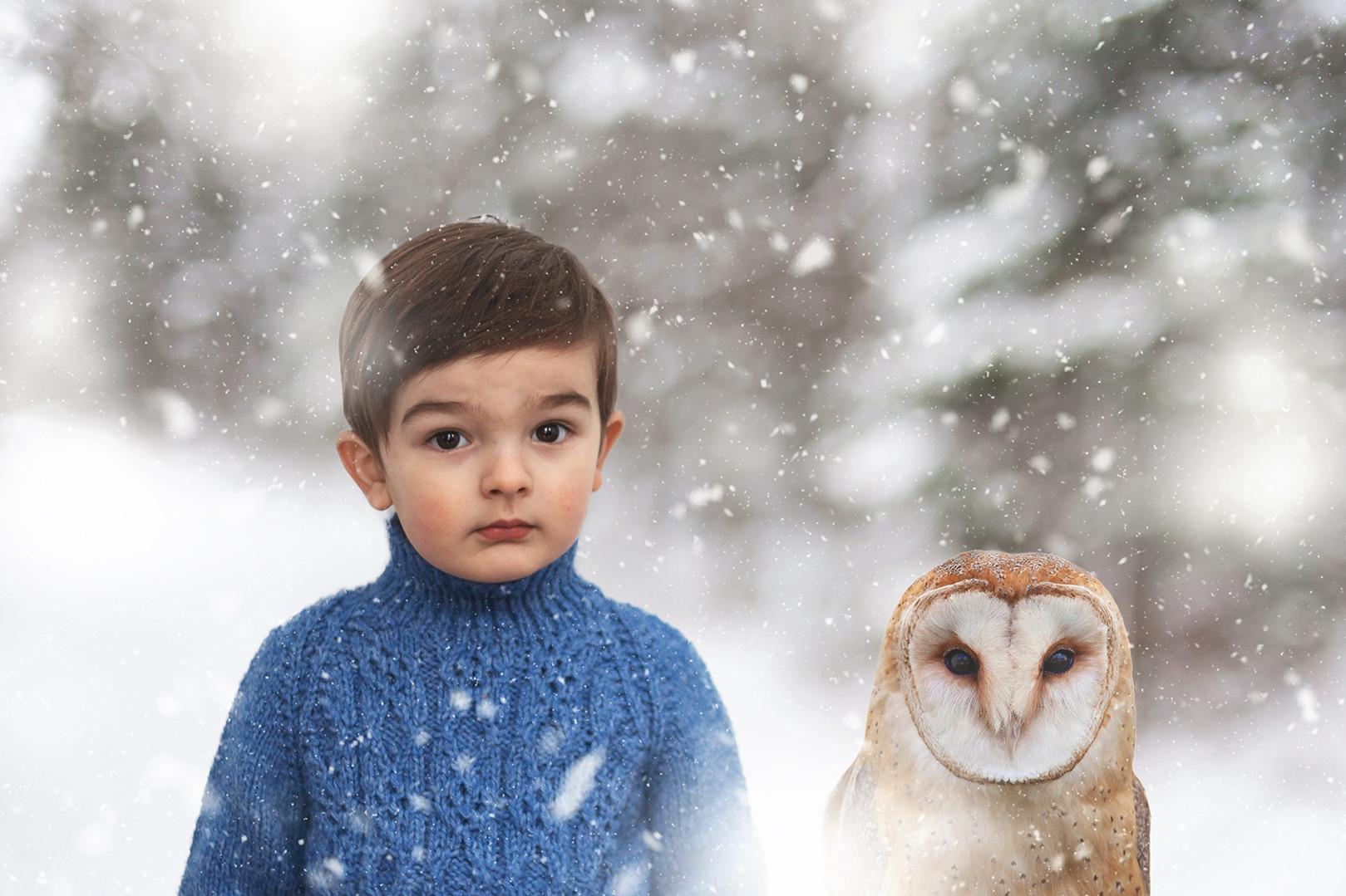 boy and owl photography digital painting custom