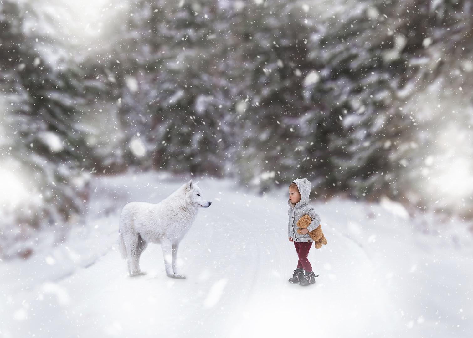 wolf and girl in wonter wonderland