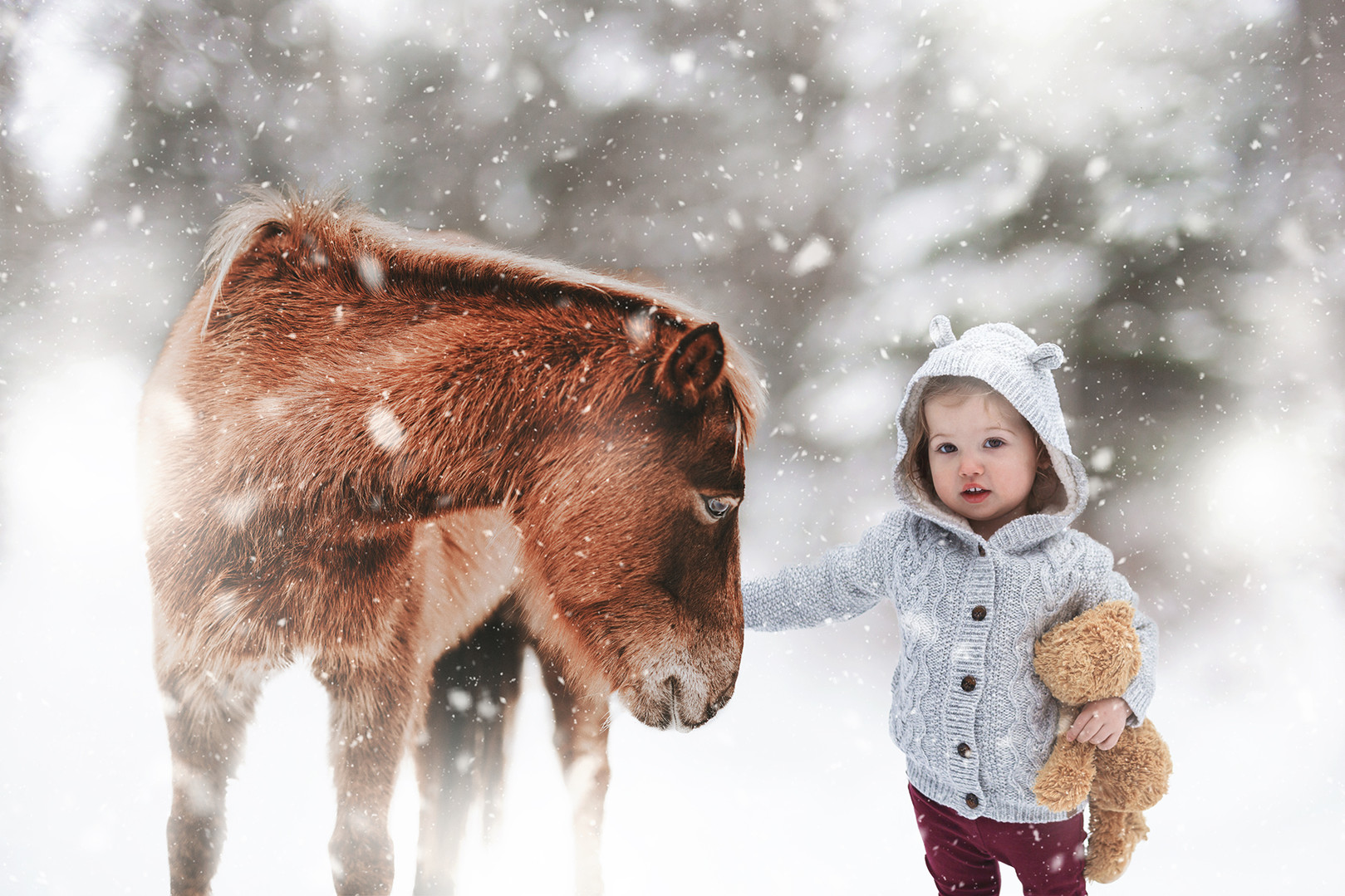 girl and horse muskoka artist