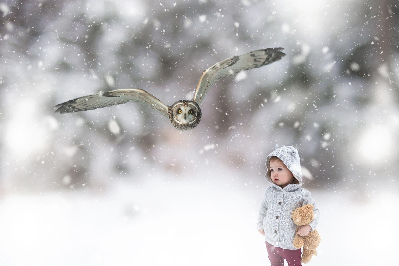 child with soaring snowy owl winter muskoka