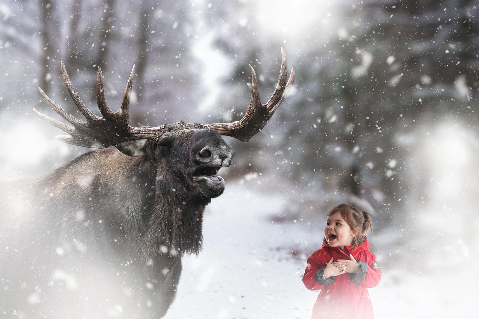 girl and moose muskoka art