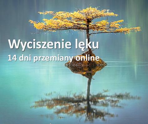 Zrzut ekranu 2020-06-24 o 07.54.15.png