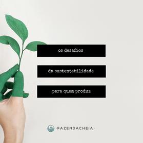 Os desafios da sustentabilidade para quem produz