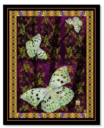 """""""The Butterfly Garden"""""""