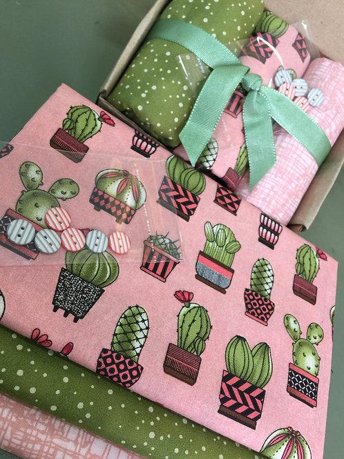 Kit Cactus Salmão