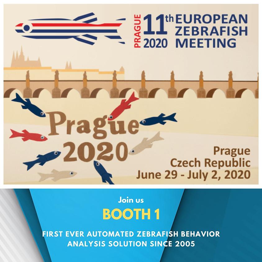 11th European Zebrafish Meeting 2020