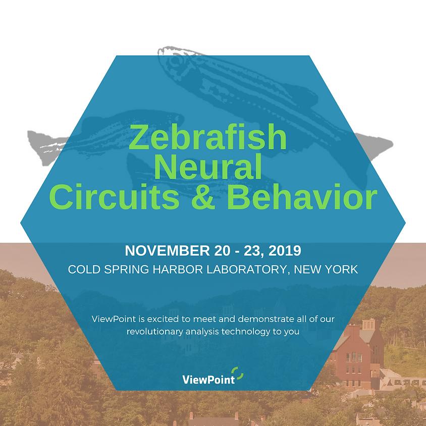Zebrafish Neural Circuits & Behavior