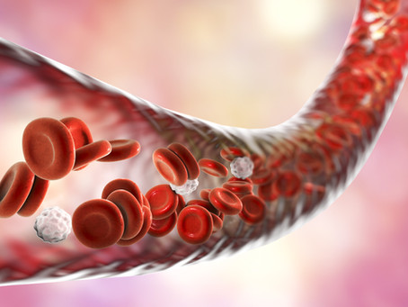 Blood vessels regulate our neurons!