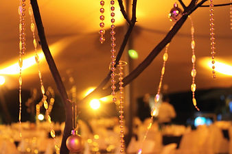 decoration for private party