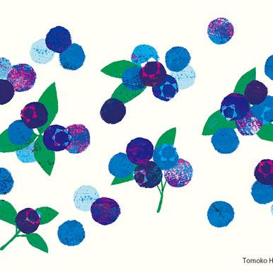 Syun-ka Blueberry