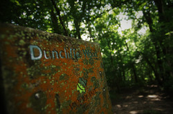 Duncliffe Hill