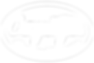 Cayuga Chamber Logo-01.png