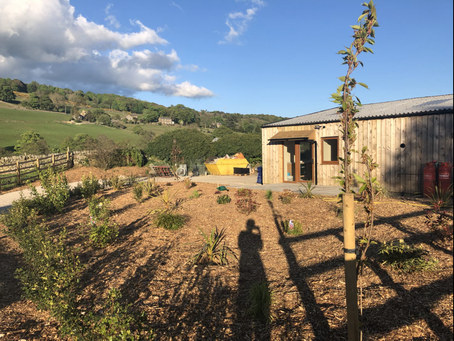 Introducing Hill View Pateley!