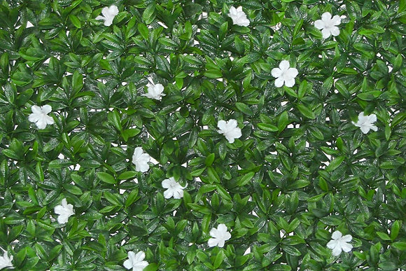 VSE Petunia Blanca