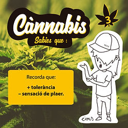 cannabis insta TOLERANCIA3.jpg